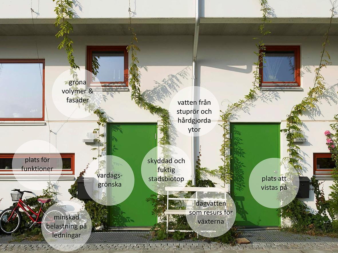 Urban Layers ger plats för stadsgrönska