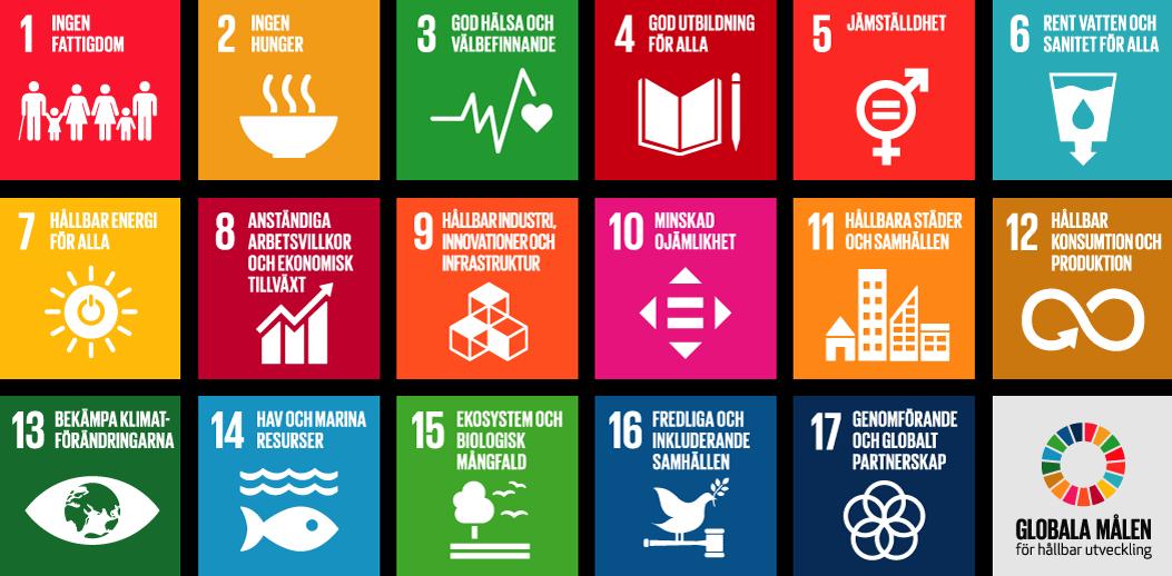 De globala målen och Ekologigruppen